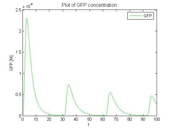 GFP dave 1.jpg