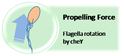File:Propelling.png