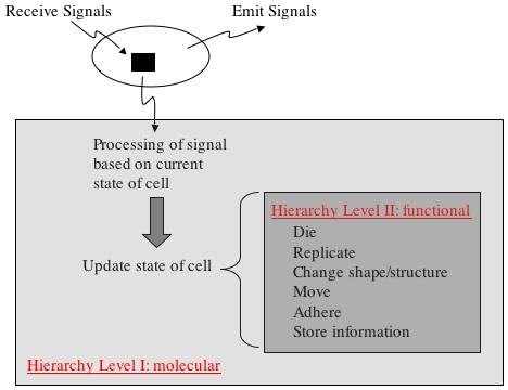 SpatialProgramming Hierarchy.jpg