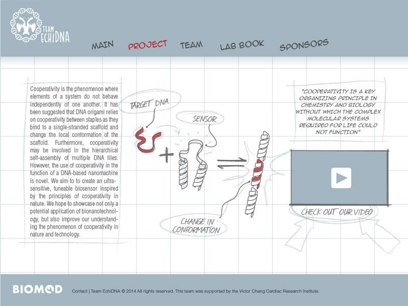 File:2014-EchiDNA-SKETCHBOOK-web-3.jpg