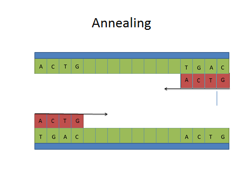 Image:Annealing data.jpg