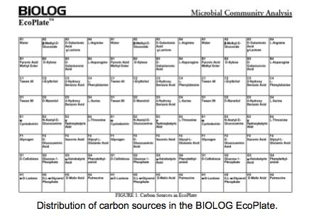 File:Biolog Ecoplate.jpg