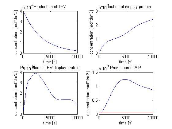 File:Protein display.jpg