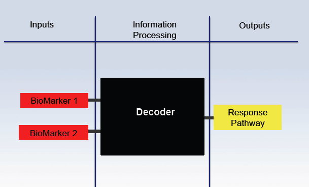 File:Decoder modularity Ill iGEM09.png