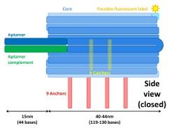 File:BM12 nanosaurs Overview Side view s.jpg