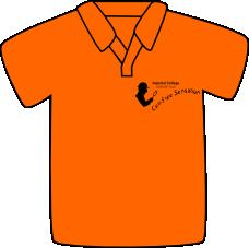 ICGEMS Orange Front.png