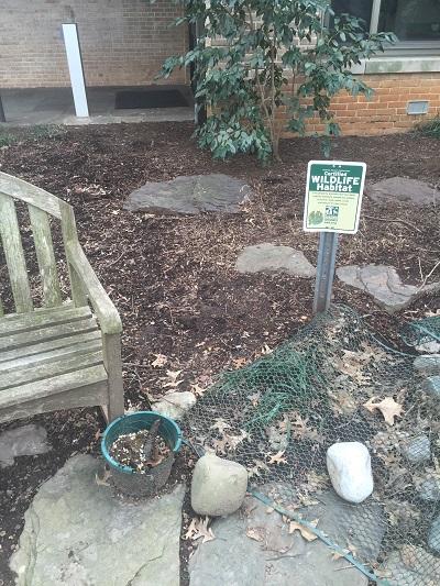 Bio210sec7loveseat,flowerpot,rocks.po.JPG
