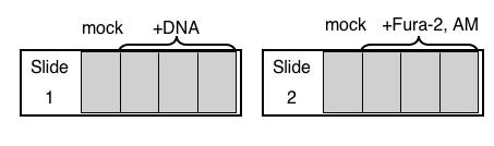 File:Macintosh HD-Users-nkuldell-Desktop-Catreatmentslides.png