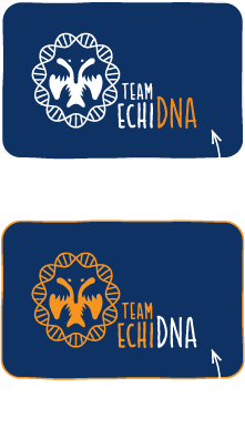File:2014-EchiDNA-HOME-TEAM-LOGO-2.png