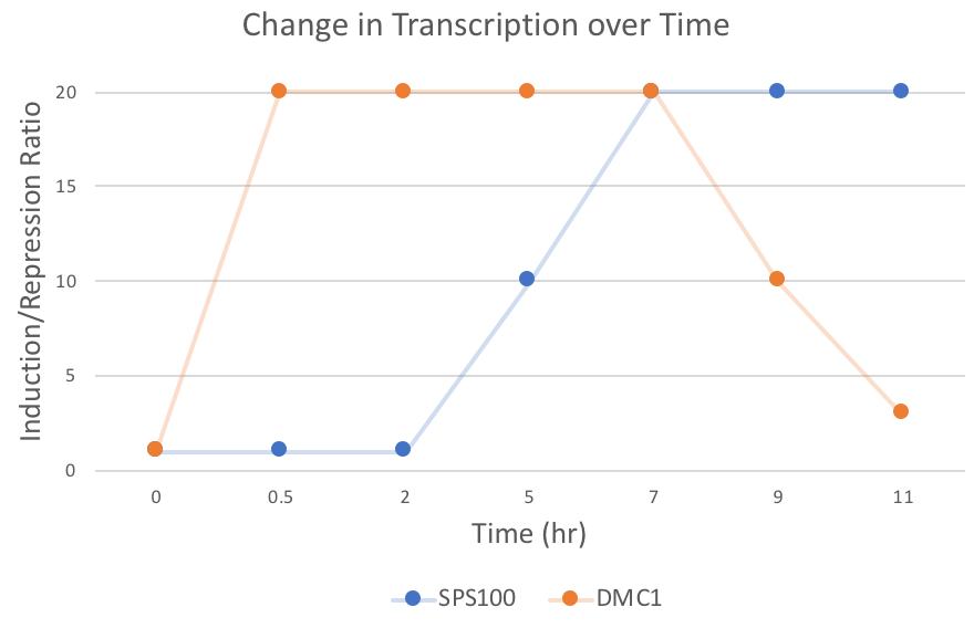 File:Graph 1.png