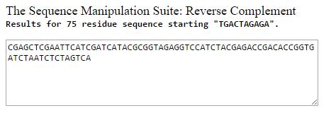 YOX1-3 YOX1-kanC ReverseCompliment.PNG