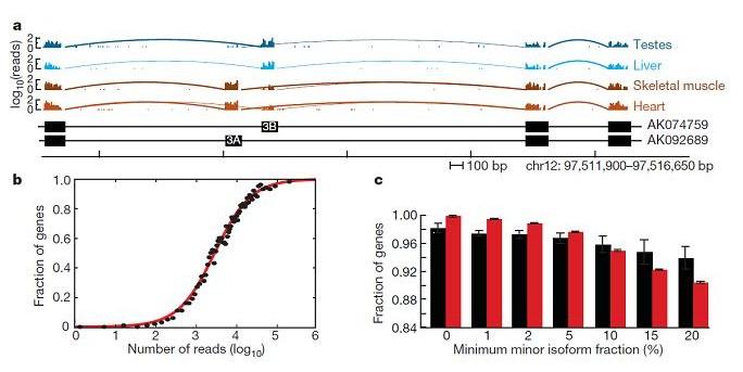 File:RNA-Seq pres.jpg