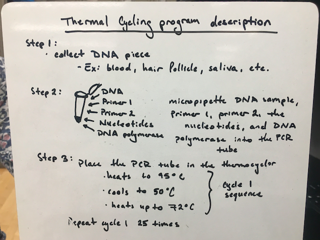 ThermalCycling G4.png