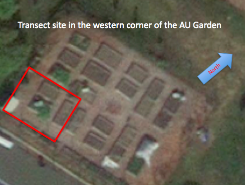 File:Aerial Overview From Google Maps.png