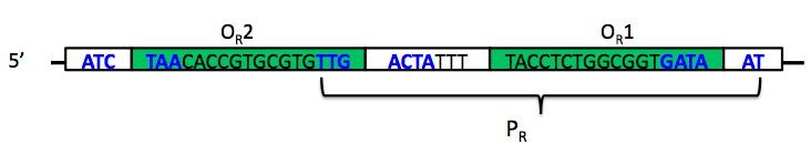 File:S11-M2 lambda-PR.jpg