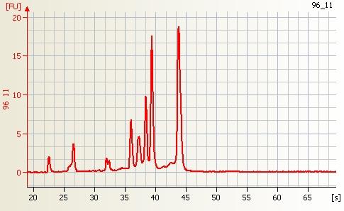 File:Arabidopsis RNA good quality.jpg