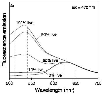 File:II09 fluor spec graph.jpg