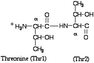 Threonines.jpg