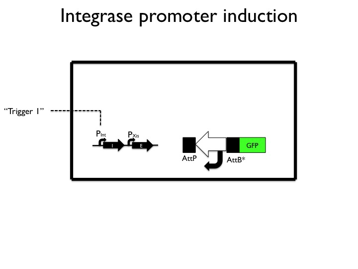 File:Induction.jpg