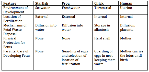 Image:Table 2 Embryology.png