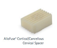 A sample spinal graft from AlloSource.[6]