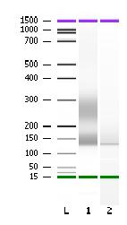 File:Sample-Prep-Result1.png