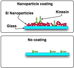File:Silica nanoparticles.jpg