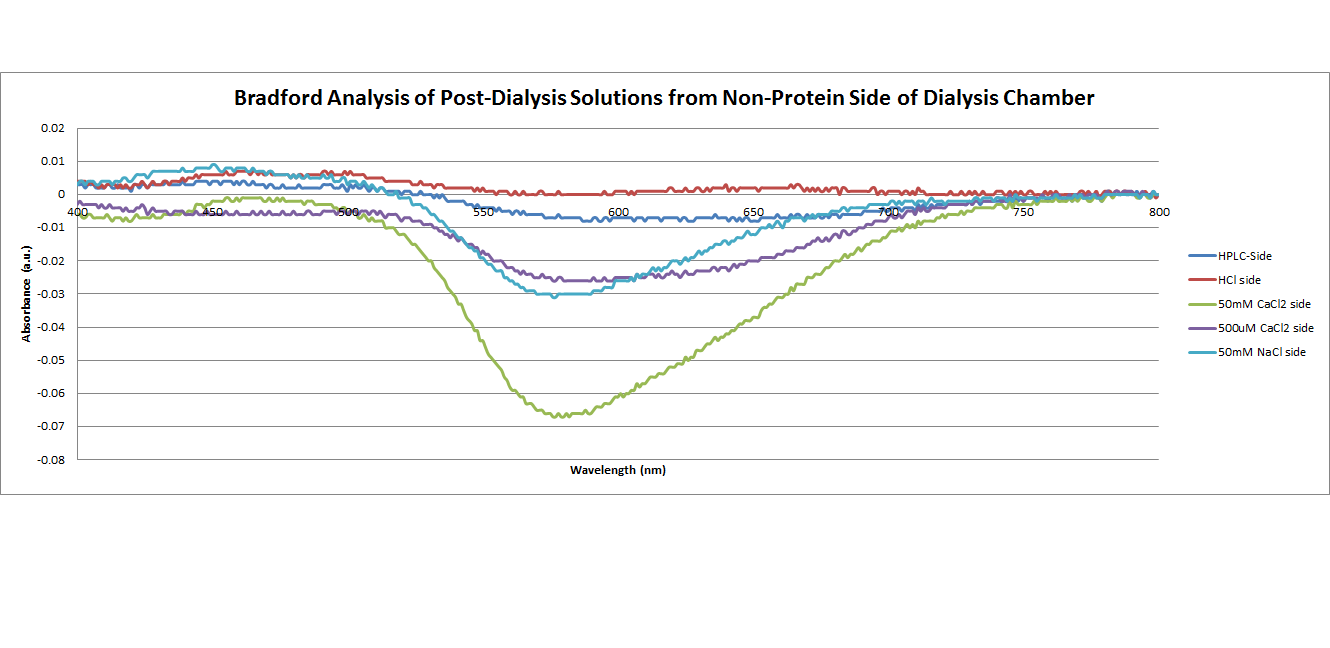 Bradford analysis of post dialysis solutions from non protein side of dialysis chamber.png