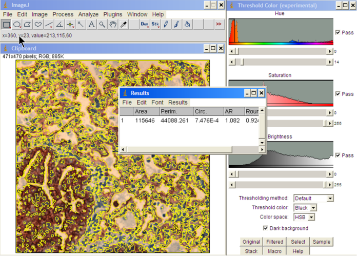 imagej threshold coloring pages - photo#8