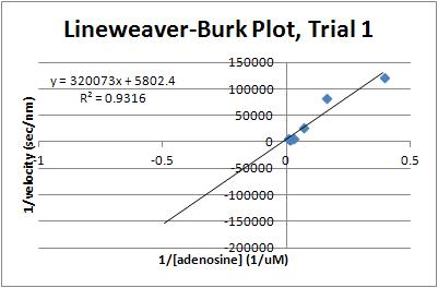 File:Lineweaver-Burk Plot T1.JPG
