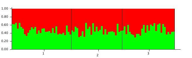 File:20111106 StructureBarPlot b2.jpg