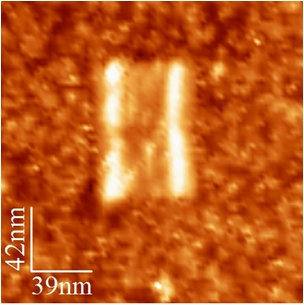 File:BM12 nanosaurs AFM Open single.jpg