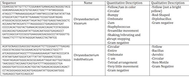 File:Mini Lab Table.png