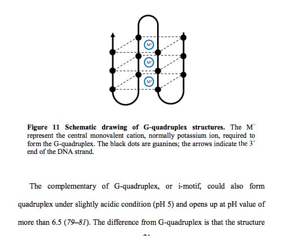 G-quadruplex.png