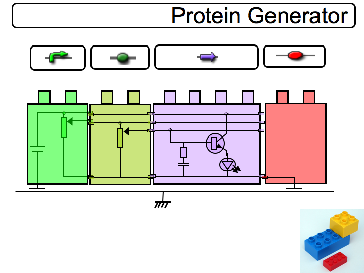 File:HandsOnBioBrick ProteinGenerator.png