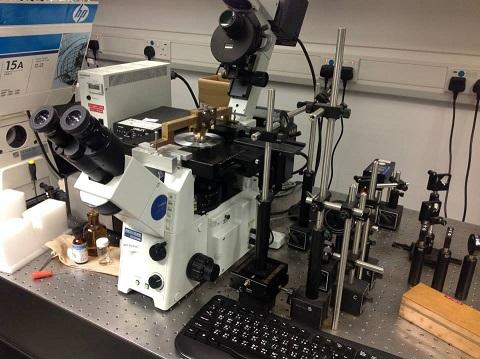 File:HKBU 2013 Microscope.jpg