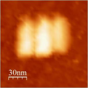 File:BM12 nanosaurs AFM Closed single.jpg