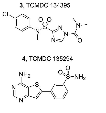 Targetmolecules.png