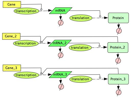 File:CellDesigner FeedBack Gene Expression Network.png