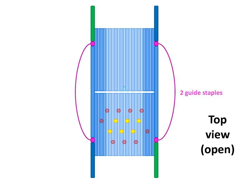 File:BM12 nanosaurs 7 guide staple top.jpg