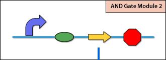 File:PKU Module3-over.png