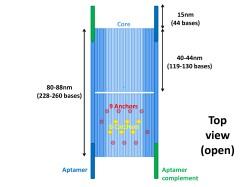 File:BM12 nanosaurs Overview Top view s.jpg