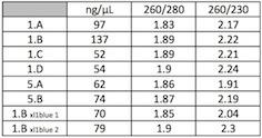 Nanodrop 12 07 Sheet1.jpg