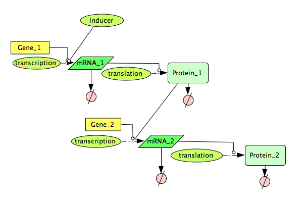 File:CellDesigner Simple Genetic Cascade Network.png