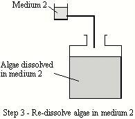 Hydrogen bioreactor schematic 3.JPG