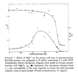 Image:Mg concentration MT polymerization.jpg