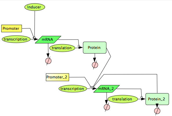 File:CellDesigner Mystery Device Network.png