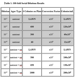IMAGE:100-FOLD_SERIAL_DILUTIONS_RESULTS.png‎