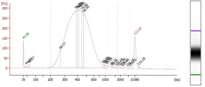 File:Bioanalyzer-skinks-plate1.jpg