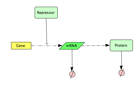 File:CellDesigner Represssed Gene Expression Network.png